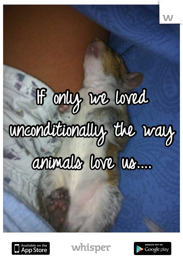 If only we loved unconditionally the way animals love us....