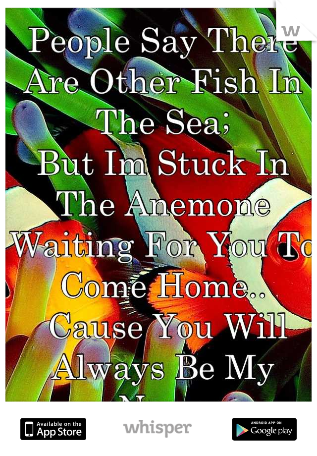 People Say There Are Other Fish In The Sea; But Im Stuck In The Anemone Waiting For You To Come Home..  Cause You Will Always Be My Nemo <3
