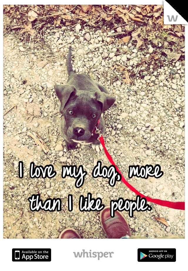 I love my dog, more than I like people.