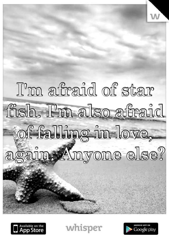 I'm afraid of star fish. I'm also afraid of falling in love, again. Anyone else?