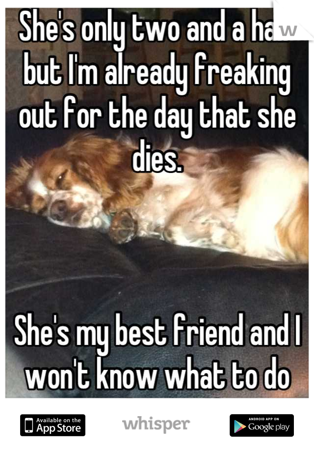 She's only two and a half but I'm already freaking out for the day that she dies.    She's my best friend and I won't know what to do with myself.