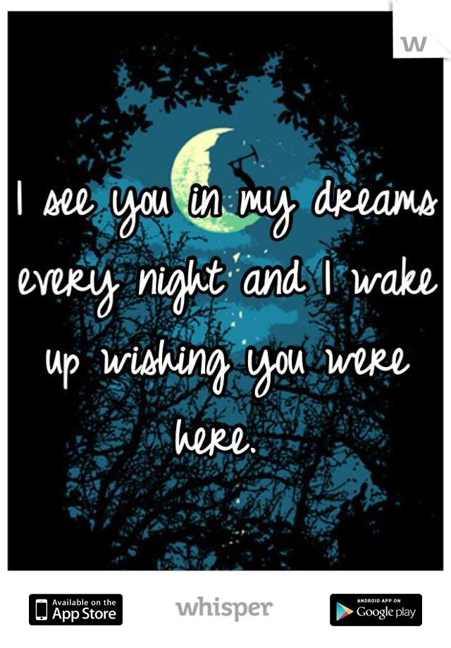 I see you in my dreams every night and I wake up wishing you were here.