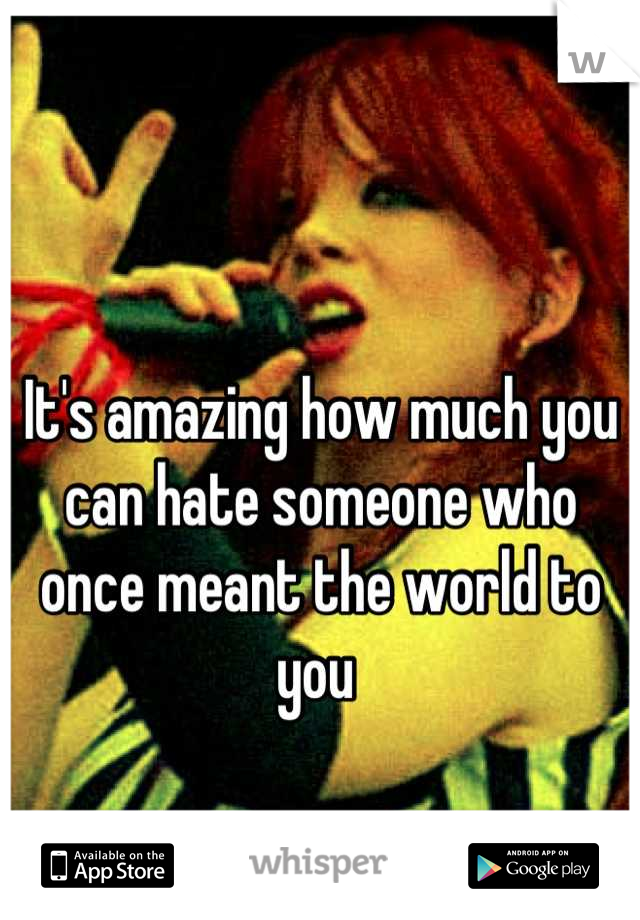 It's amazing how much you can hate someone who once meant the world to you