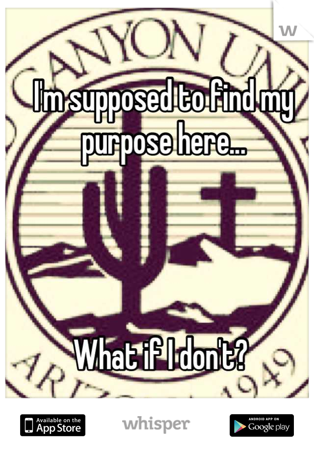 I'm supposed to find my purpose here...      What if I don't?