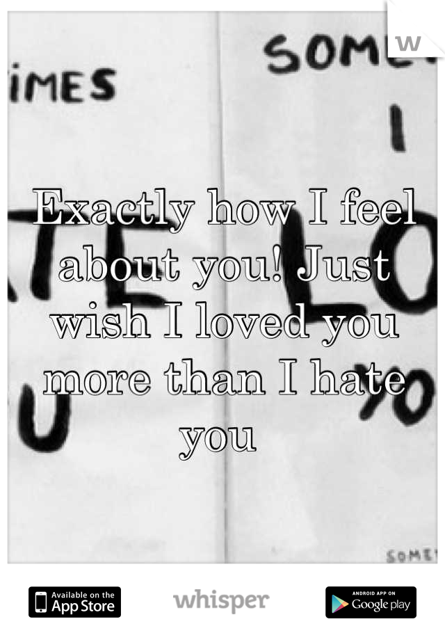 Exactly how I feel about you! Just wish I loved you more than I hate you