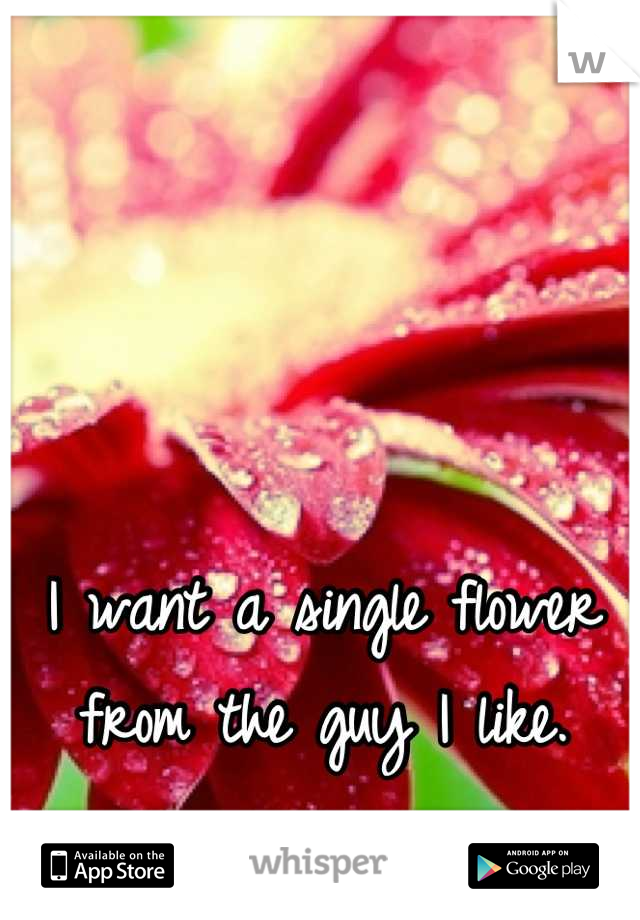I want a single flower from the guy I like.