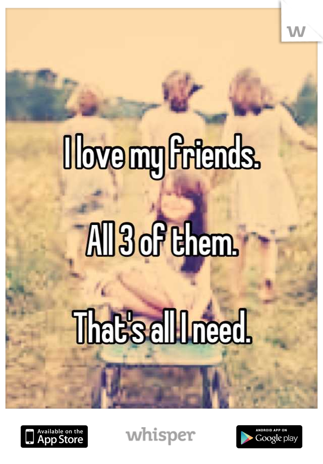 I love my friends.  All 3 of them.  That's all I need.