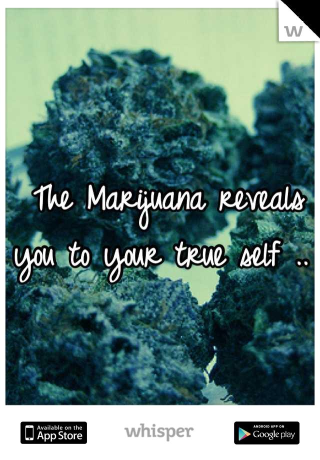 The Marijuana reveals you to your true self ..
