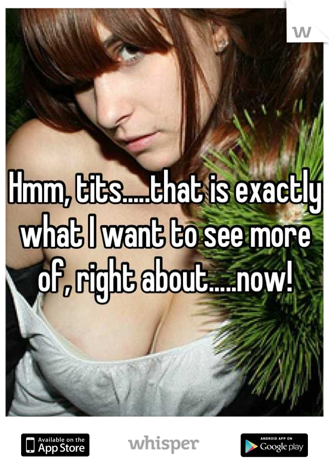 Hmm, tits.....that is exactly what I want to see more of, right about.....now!