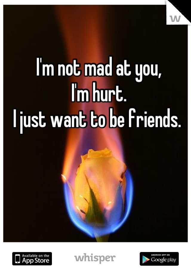 I'm not mad at you, I'm hurt.  I just want to be friends.