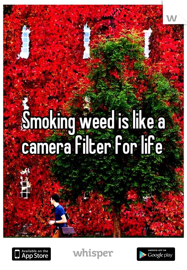 Smoking weed is like a camera filter for life