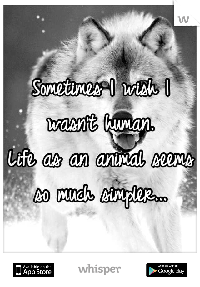Sometimes I wish I wasn't human. Life as an animal seems so much simpler...