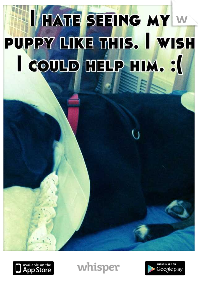 I hate seeing my puppy like this. I wish I could help him. :(