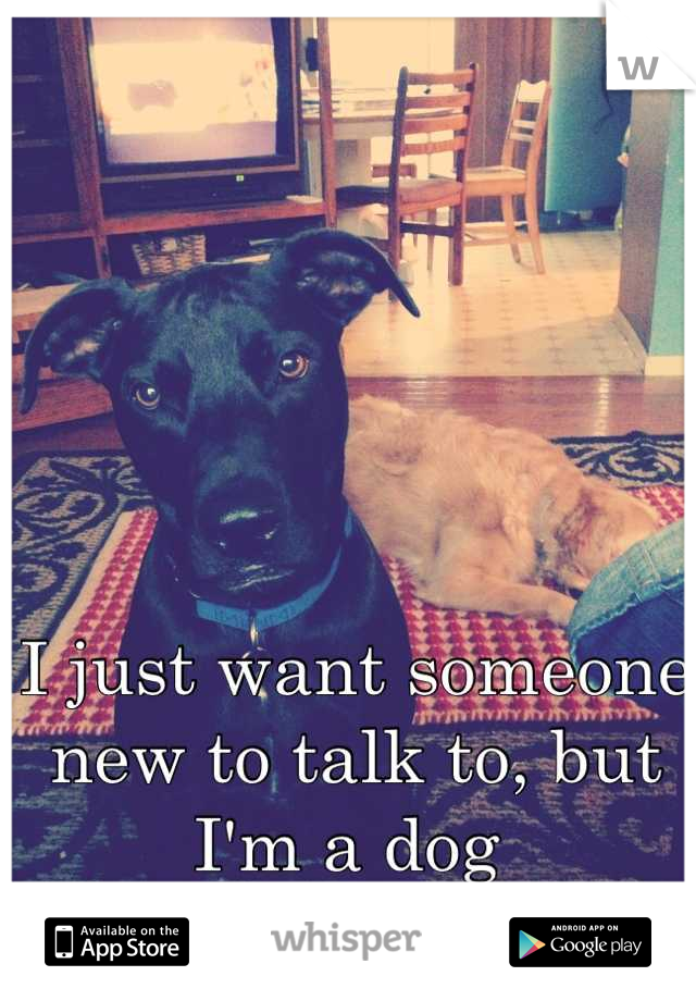 I just want someone new to talk to, but I'm a dog