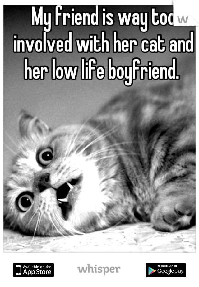 My friend is way too involved with her cat and her low life boyfriend.