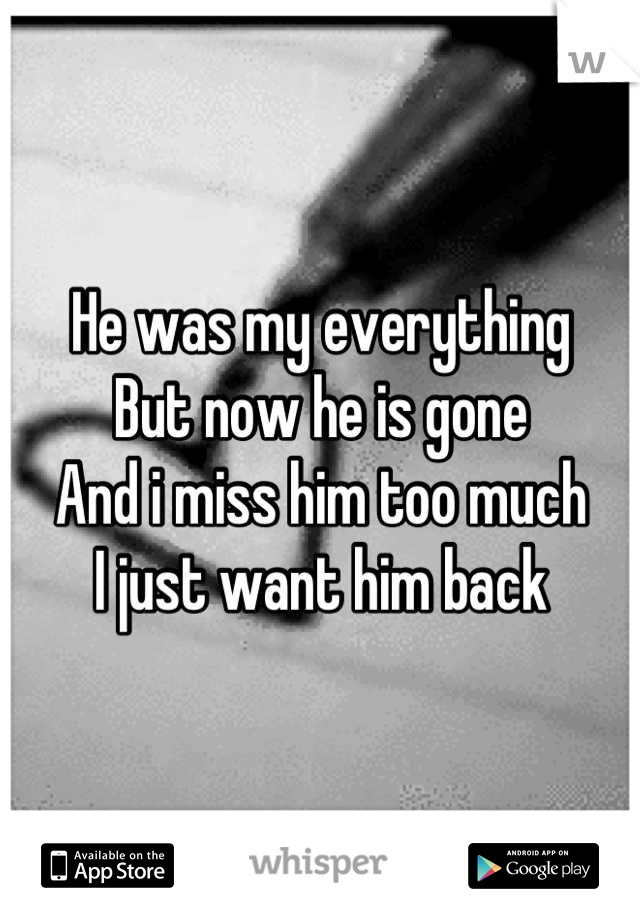 He was my everything But now he is gone And i miss him too much I just want him back