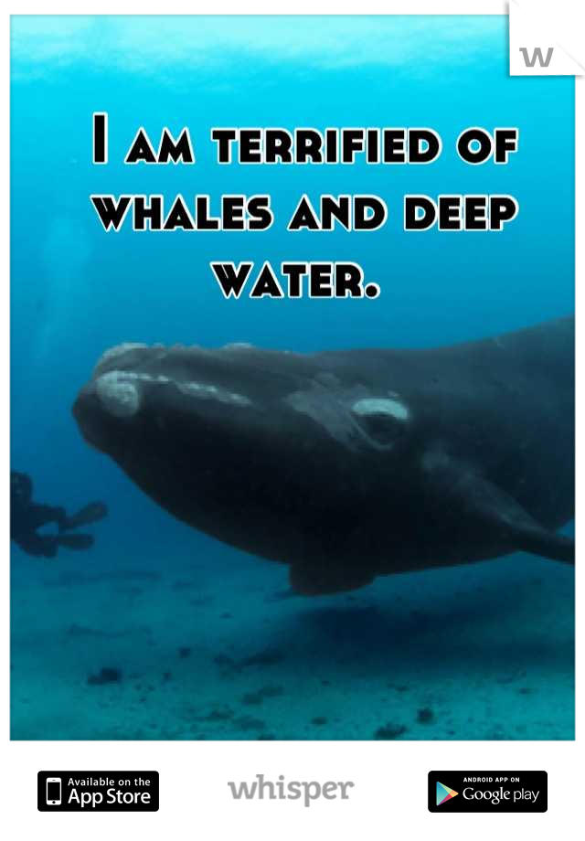 I am terrified of whales and deep water.