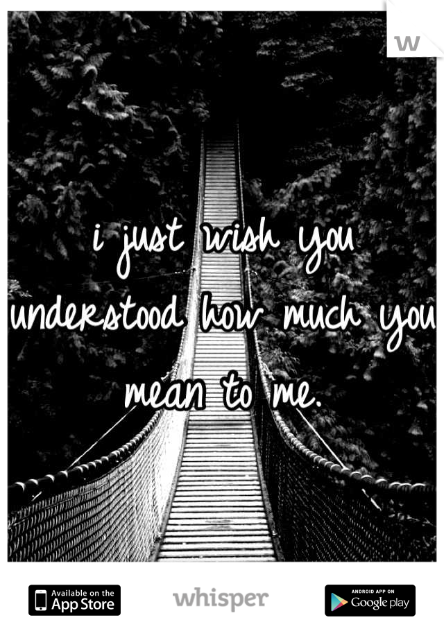 i just wish you understood how much you mean to me.