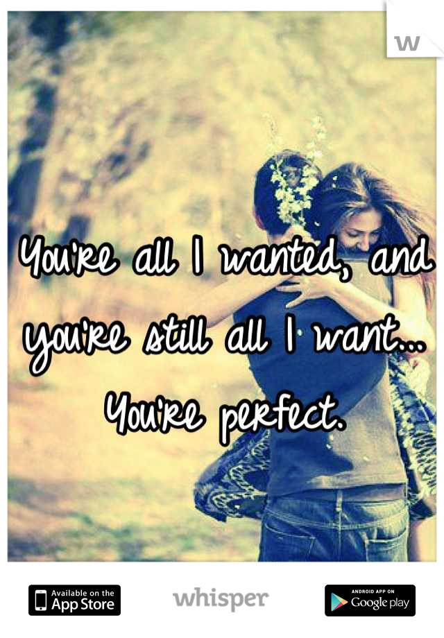 You're all I wanted, and you're still all I want... You're perfect.