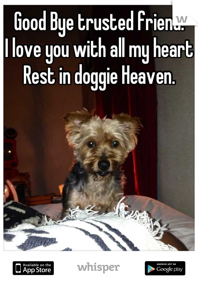 Good Bye trusted friend.  I love you with all my heart Rest in doggie Heaven.
