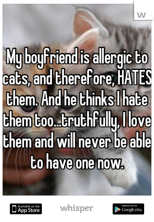 My boyfriend is allergic to cats, and therefore, HATES them. And he thinks I hate them too...truthfully, I love them and will never be able to have one now.