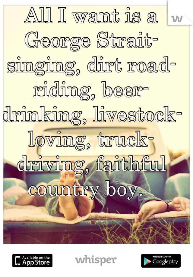 All I want is a George Strait-singing, dirt road-riding, beer-drinking, livestock-loving, truck-driving, faithful country boy.