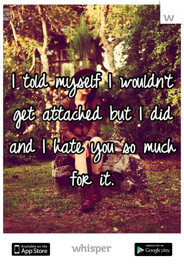 I told myself I wouldn't get attached but I did and I hate you so much for it.