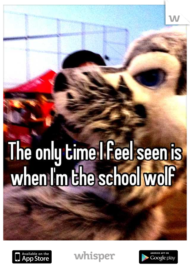 The only time I feel seen is when I'm the school wolf