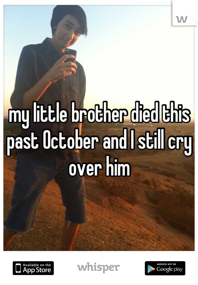 my little brother died this past October and I still cry over him
