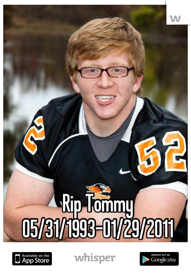 Rip Tommy  05/31/1993-01/29/2011