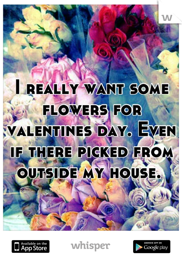 I really want some flowers for valentines day. Even if there picked from outside my house.