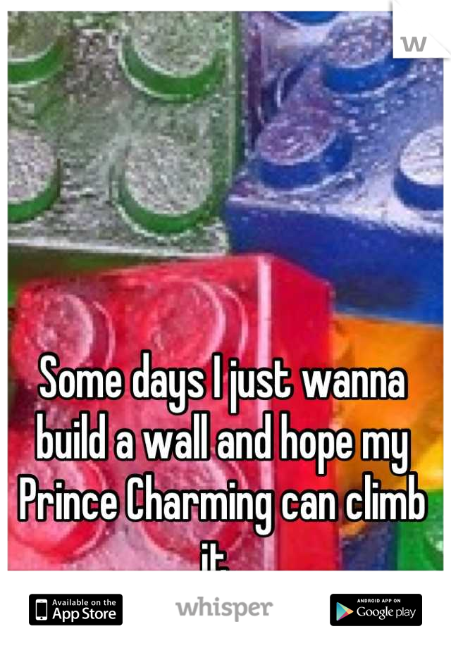Some days I just wanna build a wall and hope my Prince Charming can climb it.