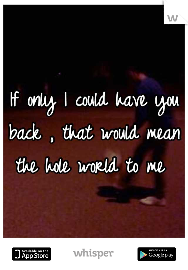 If only I could have you back , that would mean the hole world to me