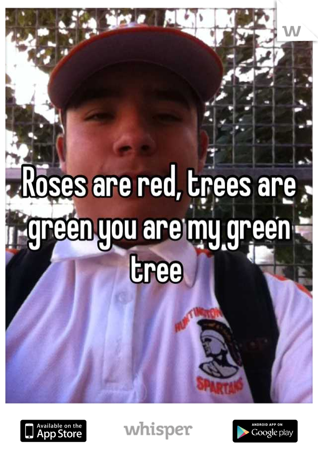 Roses are red, trees are green you are my green tree