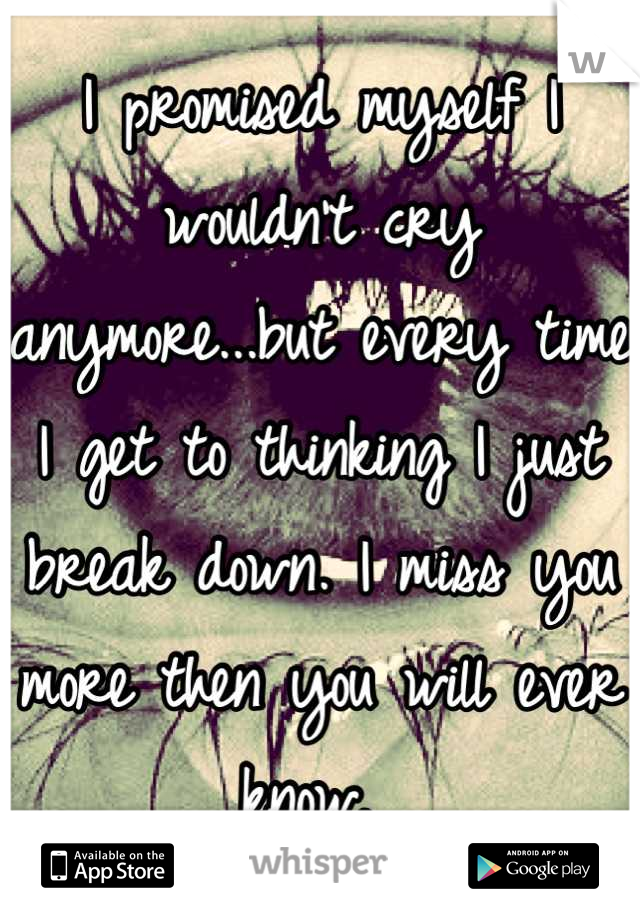 I promised myself I wouldn't cry anymore...but every time I get to thinking I just break down. I miss you more then you will ever know.