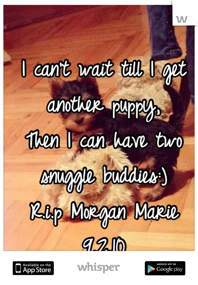 I can't wait till I get another puppy, Then I can have two snuggle buddies:) R.i.p Morgan Marie 9.2.10