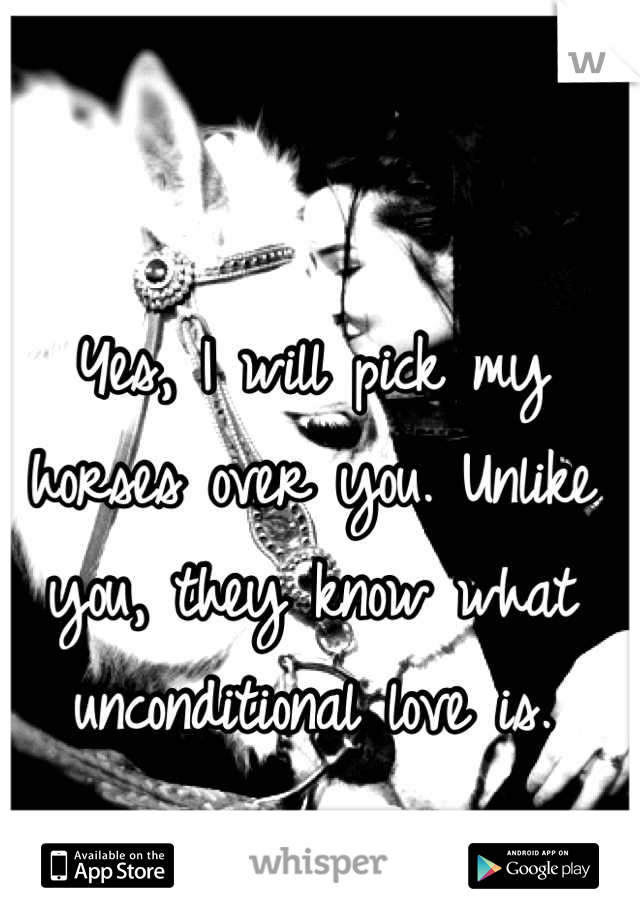 Yes, I will pick my horses over you. Unlike you, they know what unconditional love is.
