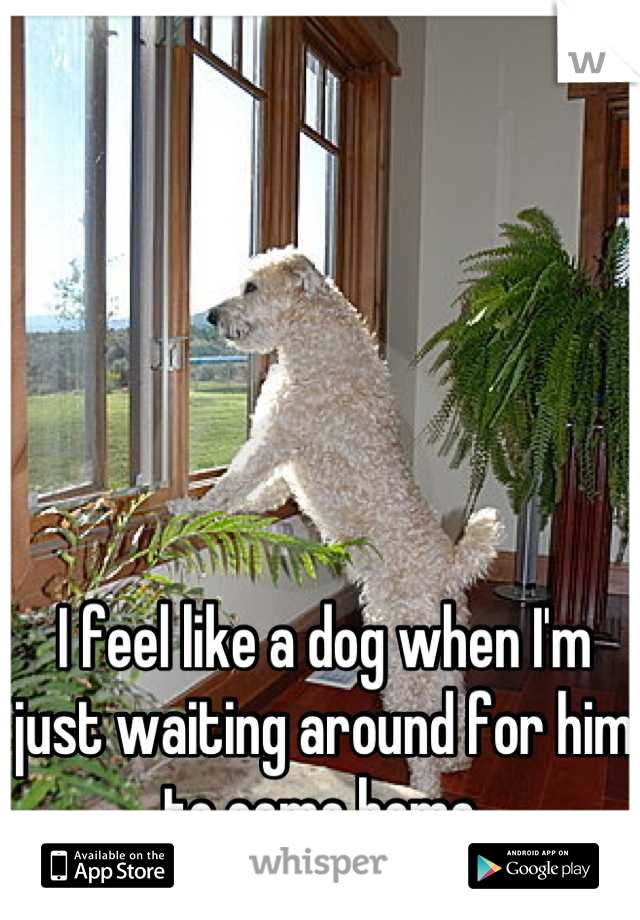 I feel like a dog when I'm just waiting around for him to come home.