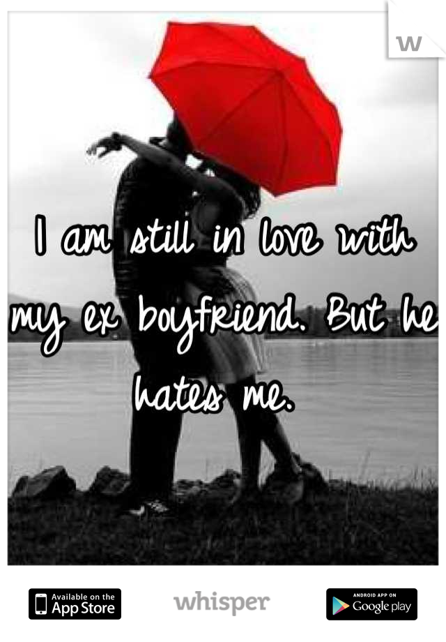I am still in love with my ex boyfriend. But he hates me.