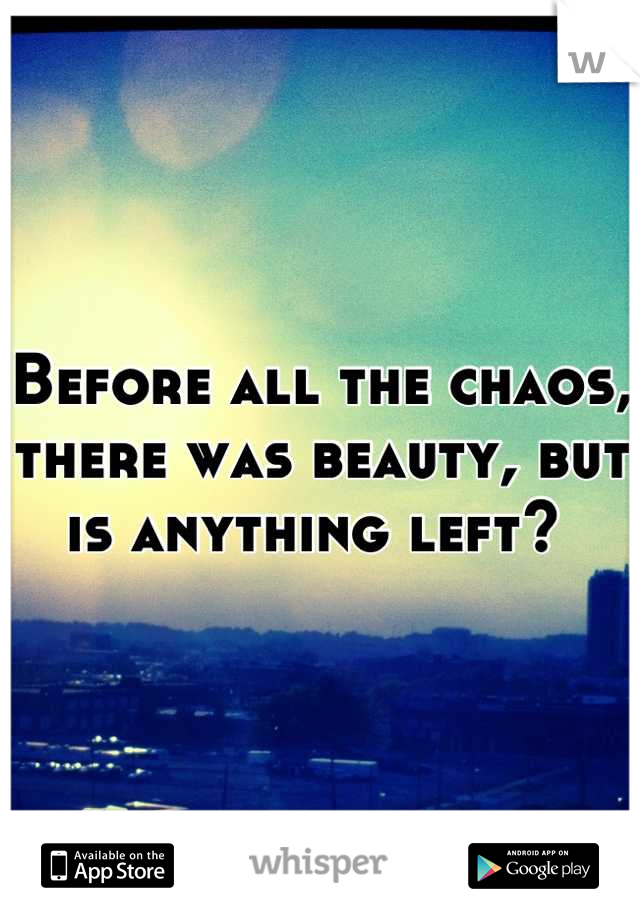 Before all the chaos, there was beauty, but is anything left?