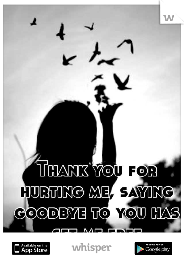 Thank you for hurting me, saying goodbye to you has set me free