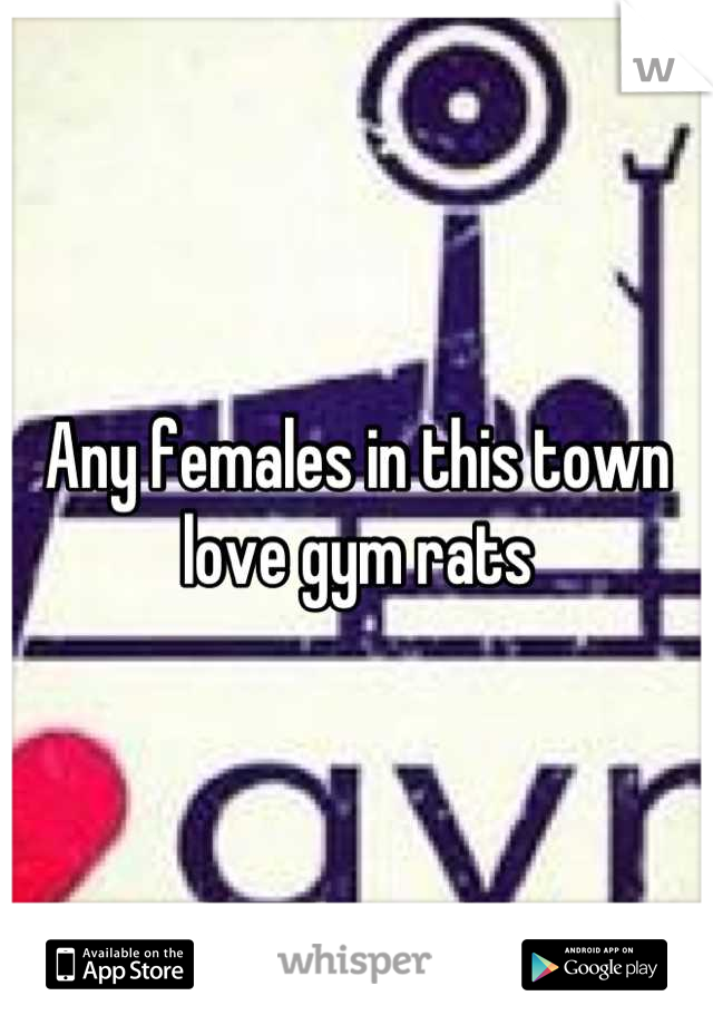Any females in this town love gym rats