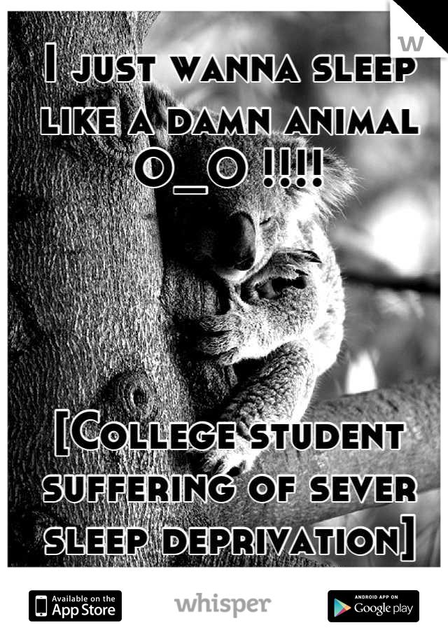 I just wanna sleep like a damn animal O_O !!!!     [College student suffering of sever sleep deprivation]