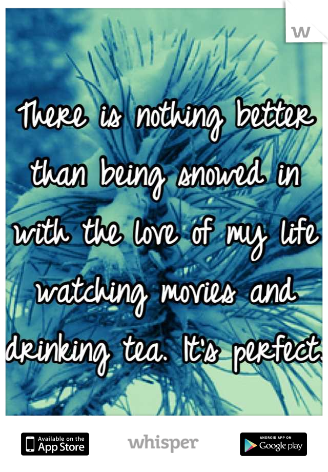 There is nothing better than being snowed in with the love of my life watching movies and drinking tea. It's perfect.