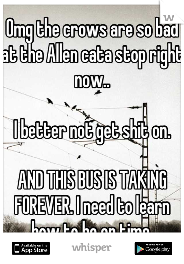 Omg the crows are so bad at the Allen cata stop right now..  I better not get shit on.  AND THIS BUS IS TAKING FOREVER. I need to learn how to be on time.