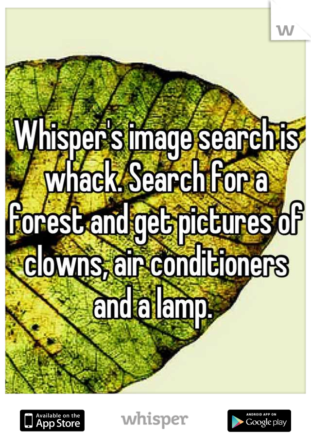 Whisper's image search is whack. Search for a forest and get pictures of clowns, air conditioners and a lamp.