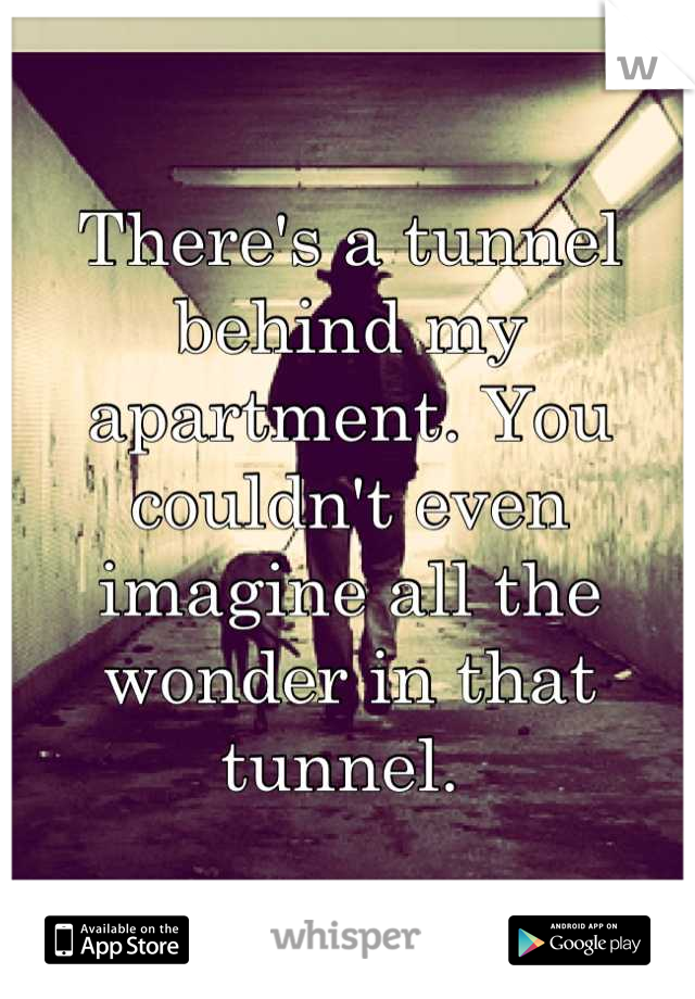 There's a tunnel behind my apartment. You couldn't even imagine all the wonder in that tunnel.