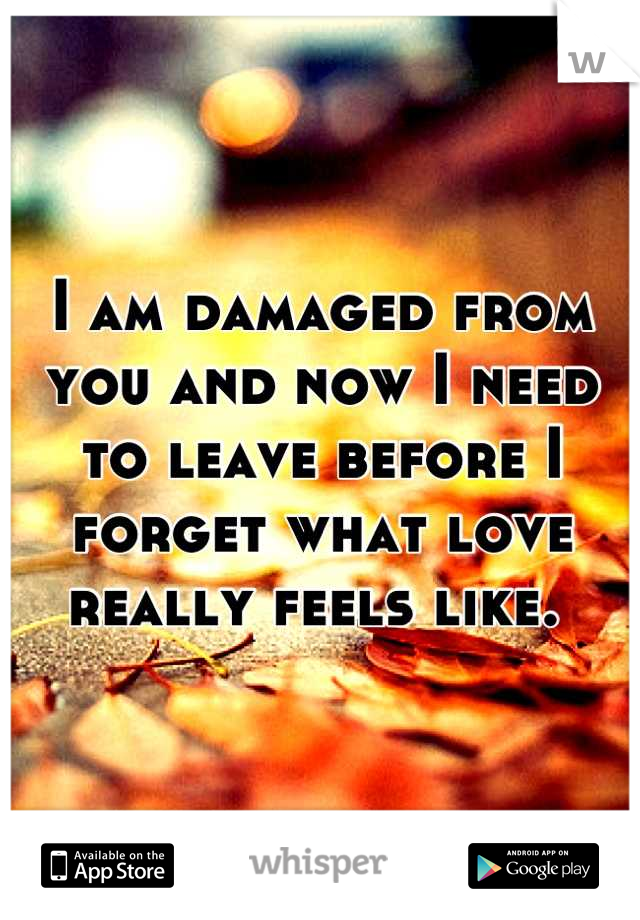 I am damaged from you and now I need to leave before I forget what love really feels like.