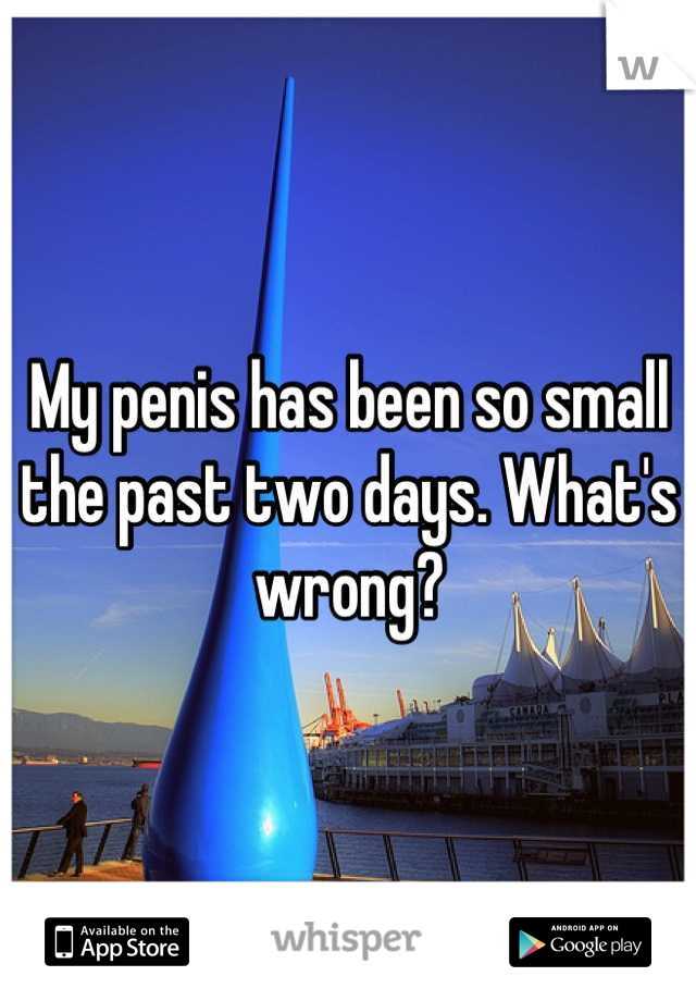 My penis has been so small the past two days. What's wrong?