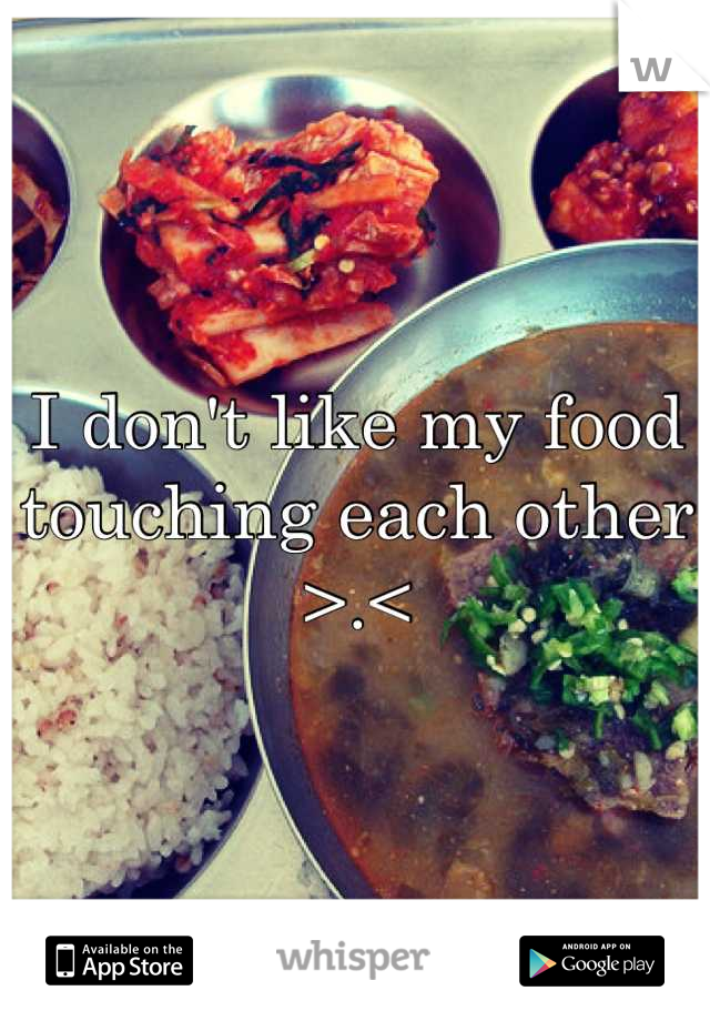 I don't like my food touching each other >.<